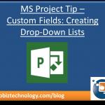 MS Project Tip - Custom Fields Drop Down Lists