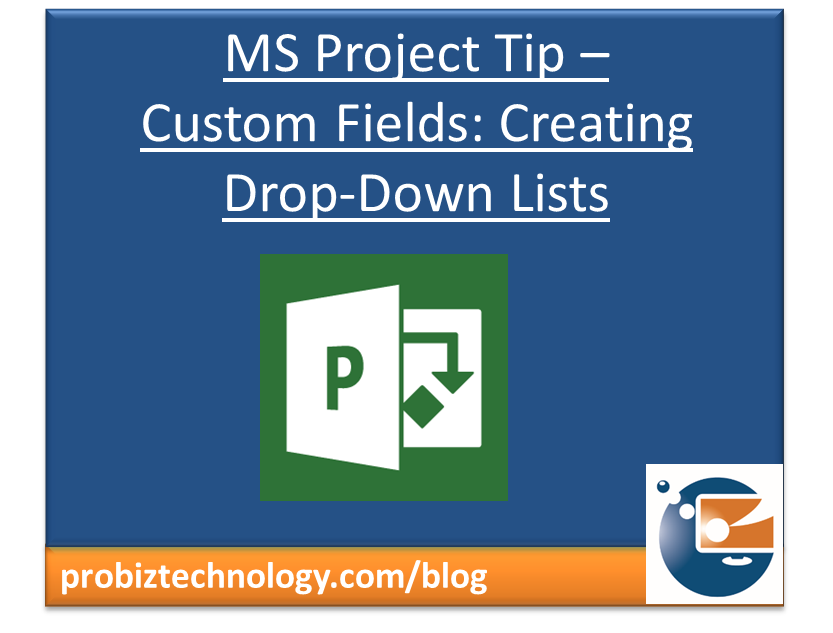 MS Project Custom Fields: Creating Drop Down Lists