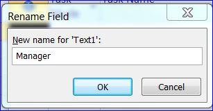 project-rename-custom-text-field